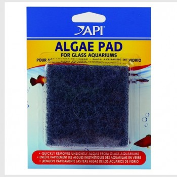 API - HAND HELD ALGAE PAD - GLASS